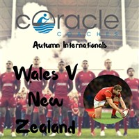 Autumn International Wales V New Zealand